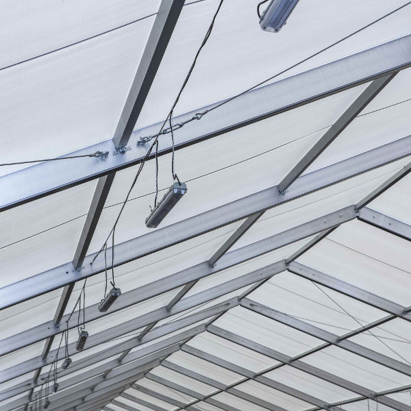 El techo de PVC